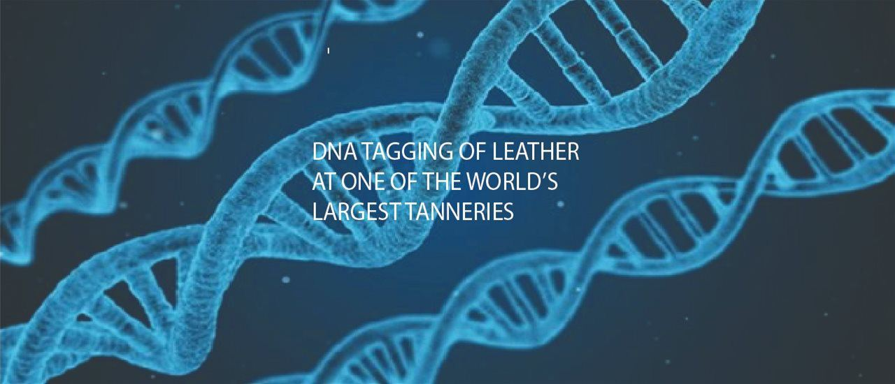 Successful DNA Tagging of Leather at one of the World's largest Tanneries