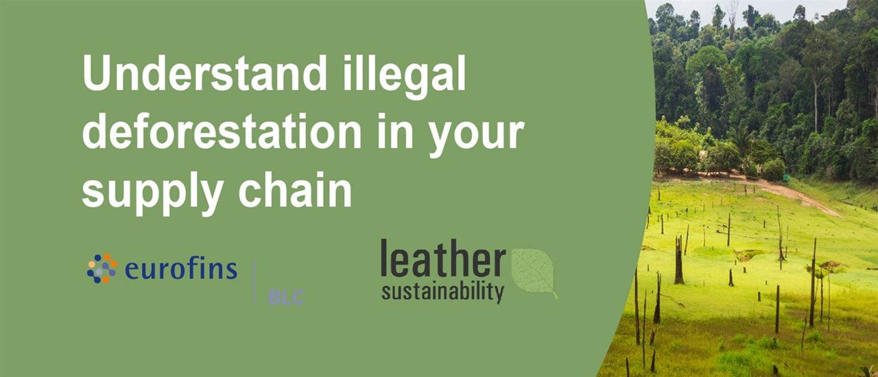 Illegal Deforestation in your Supply Chain